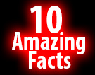 10 Amazing Facts