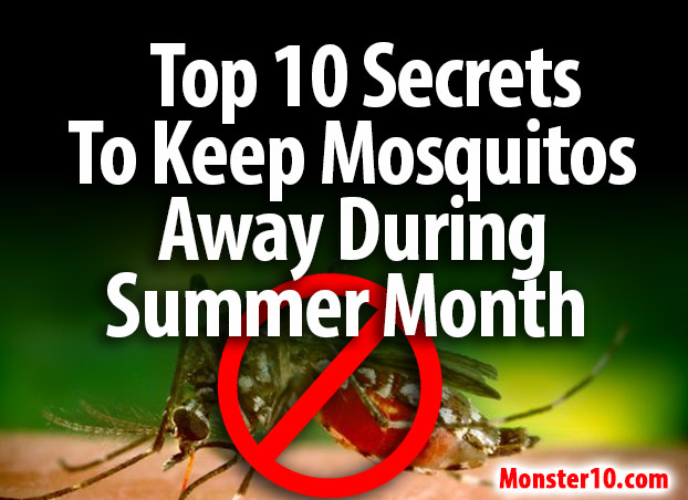 top 10 secrets to keep mosquitos away during summer months
